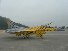Yellow Tiger Meet color F16